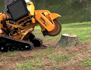welland tree stump grinding services